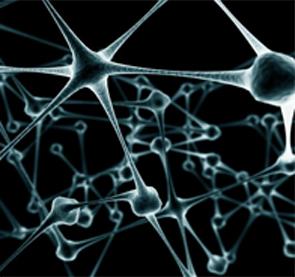 Lámina sinapsis. Poemas de Quique Vasallo